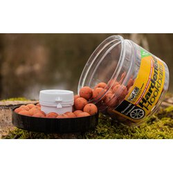 Solar Hardened Hook Baits + Amino Liquid Quench